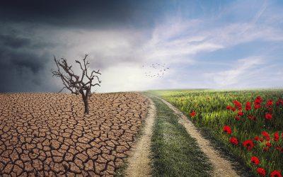Nachhaltigkeit ist mehr als nur das Desaster der Weltklimakonferenz
